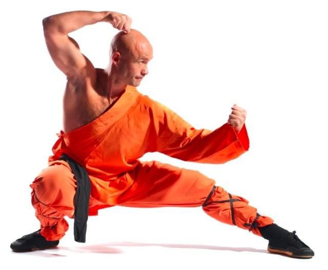 Monkey Kung Fu. Martial Arts. Martial Arts of the World. Chinese Martial arts.