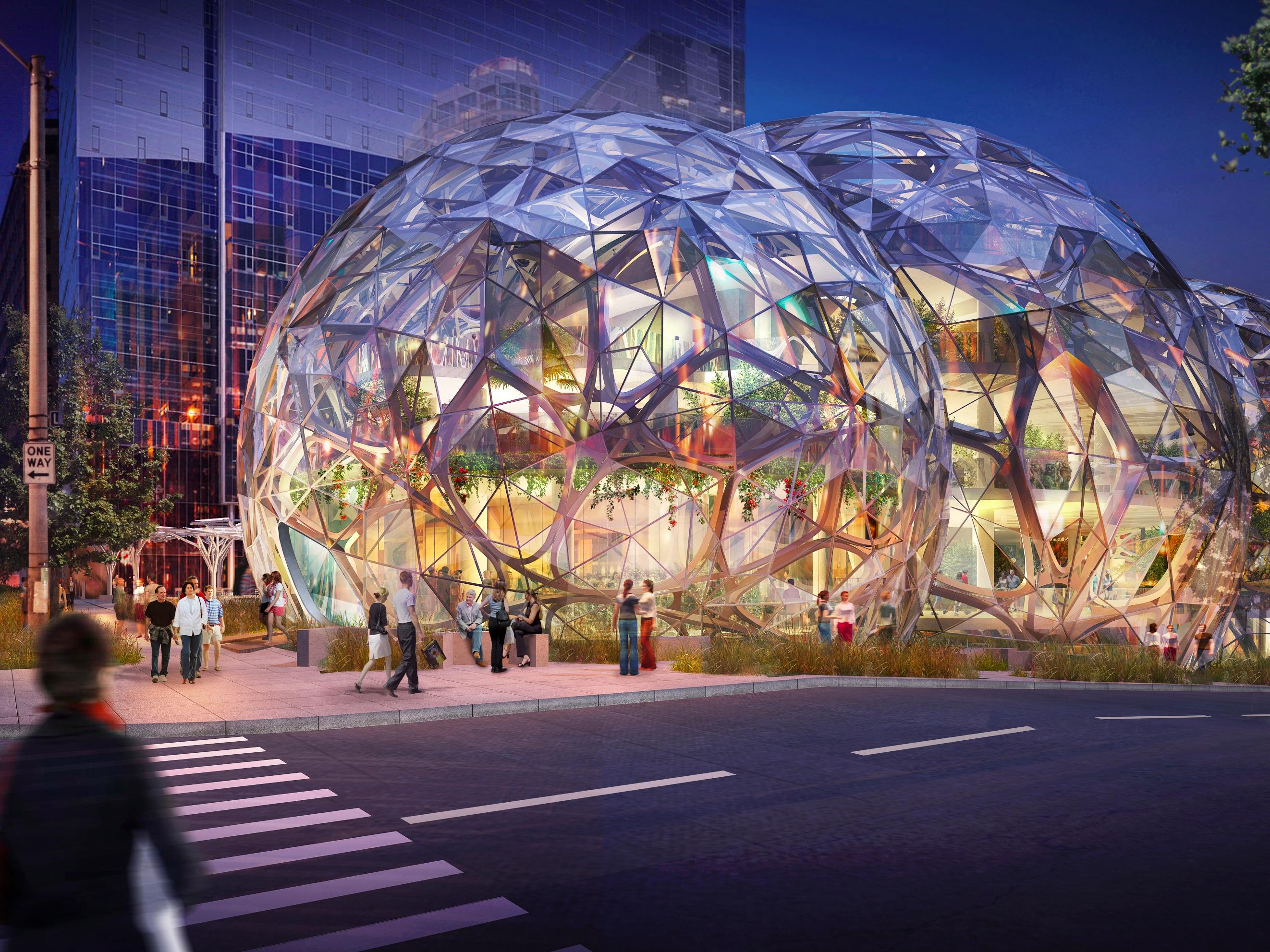 Amazon, um exemplo de empreendedorismo social
