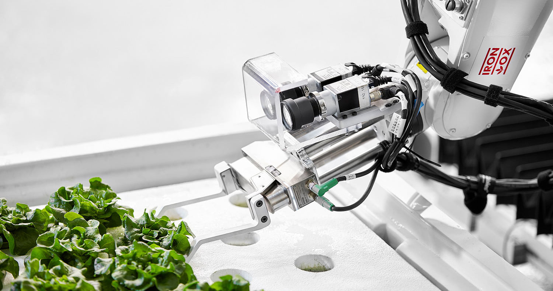 Iron Ox: agricultura automatizada