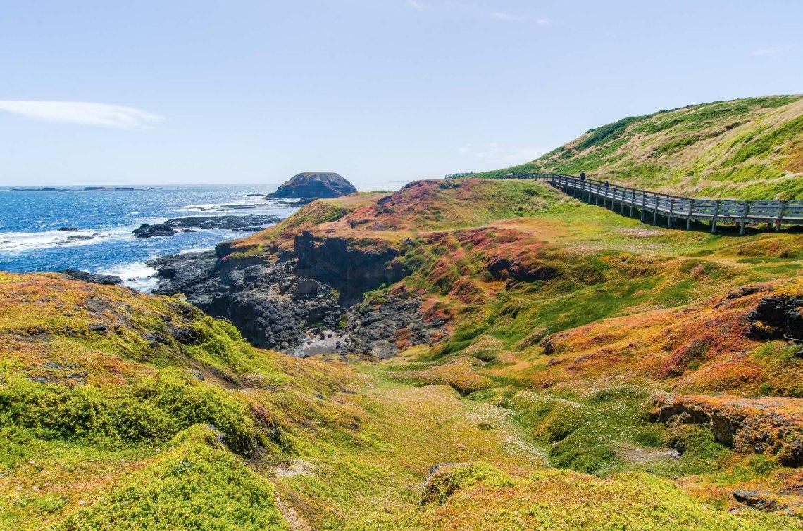 the nobbies boardwalk phillip island