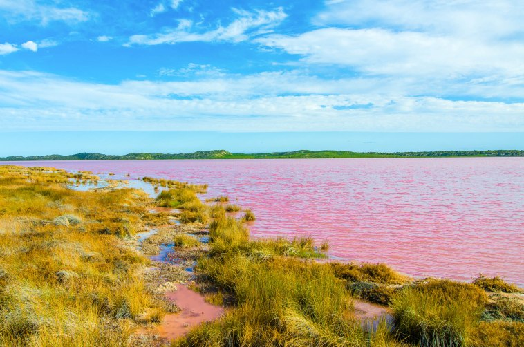 hutt lagoon pink lake port gregory