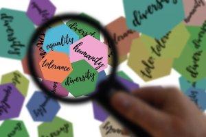 Read more about the article Créer est un métier ! La Charte défend le droit des auteurs