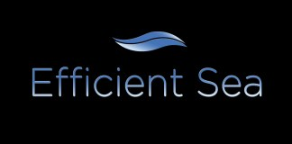 efficient-sea-logo-1200x-675.297b6990000e