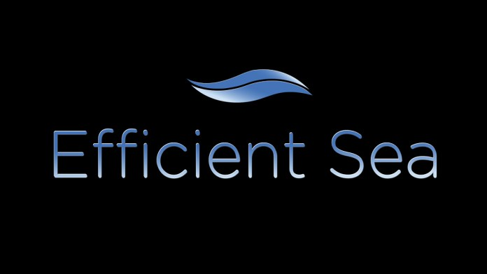 efficient-sea-logo-1200x-675.297b6990000e