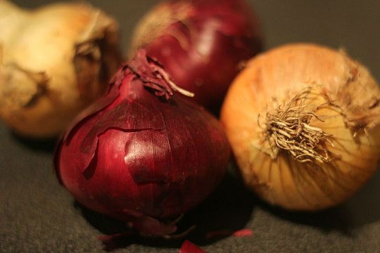 How to make Caramelised Onions in your slow cooker