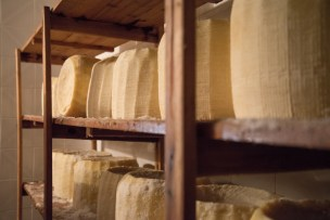 ricotta farm and cooking-1151