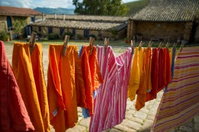 drying in the sun