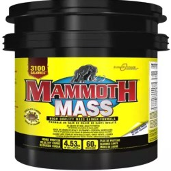 mammoth weightgainer