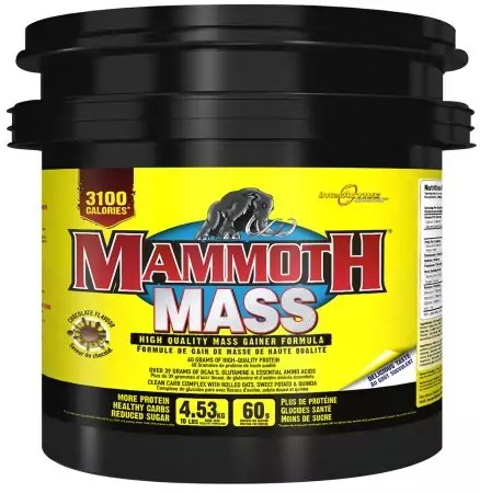 mammoth weightgainer
