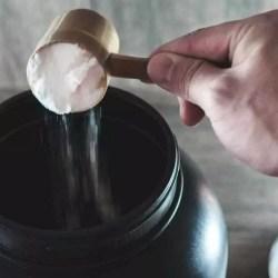 glutamine en eiwitsynthese