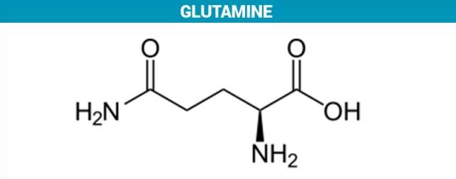 wat is glutamine