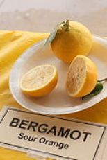 By Leslie Seaton from Seattle, WA, USA (Bergamot) [CC BY 2.0 (http://creativecommons.org/licenses/by/2.0)], via Wikimedia Commons