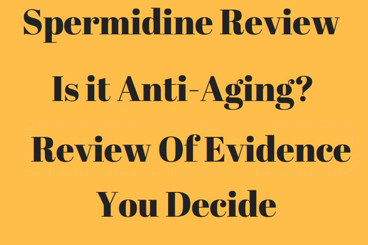spermidine-review