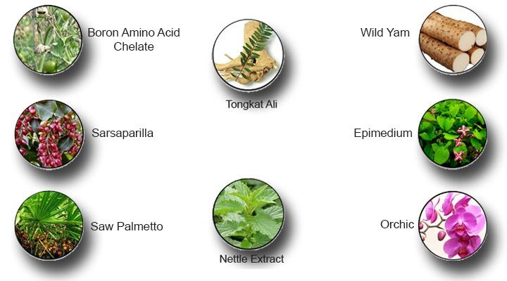 Beligra Ingredients