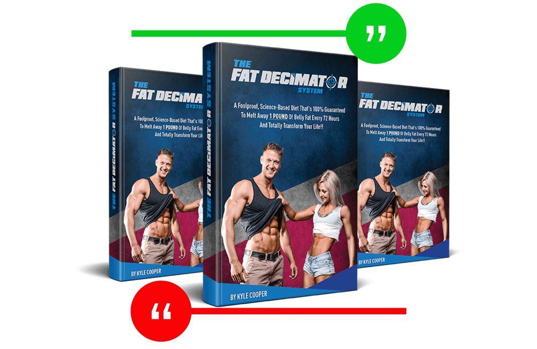 Fat decimator System Review