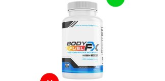Body Fuel FX Review