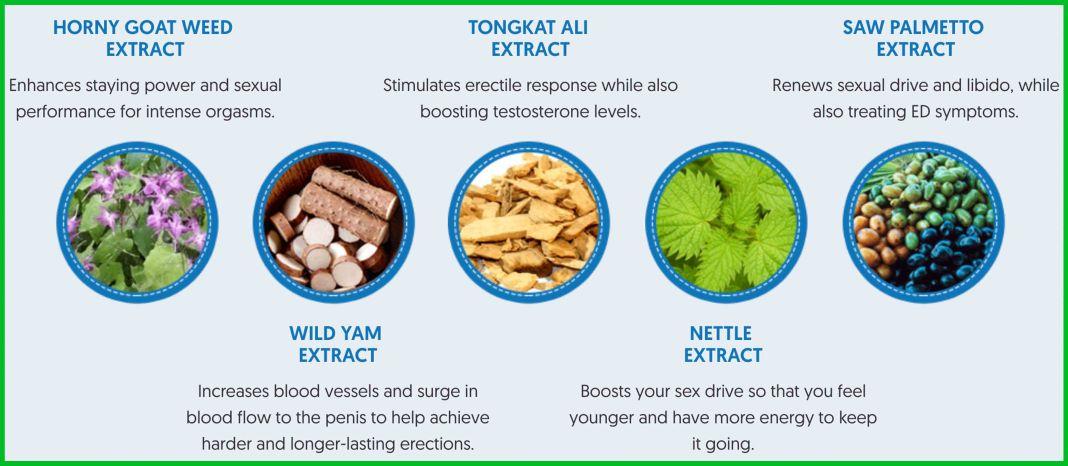 CialRx Ingredients