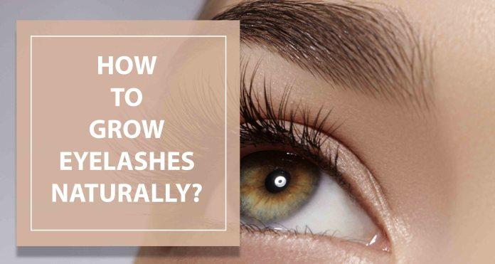 How to Grow Eyelashes Naturally