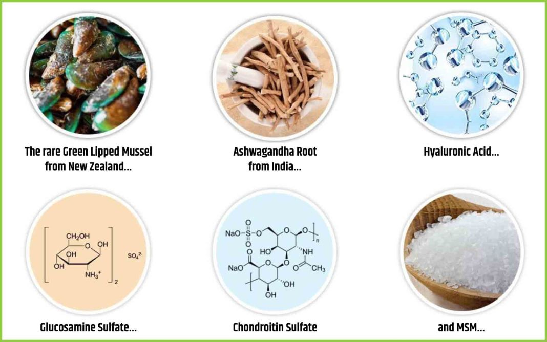 MarineFlex Ingredients