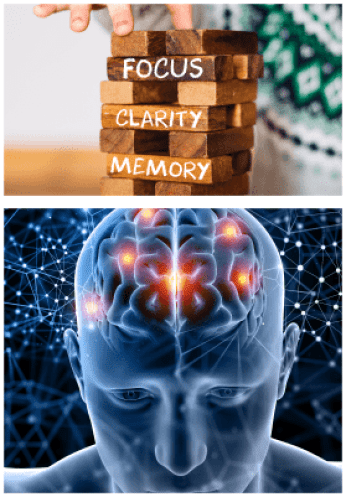 Neural Fusion nootropic pills