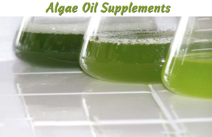Algae-Oil-Supplements