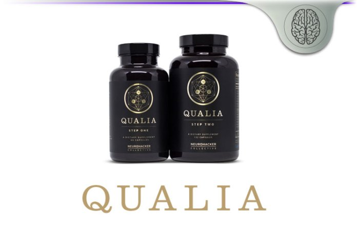 NeuroHacker Qualia