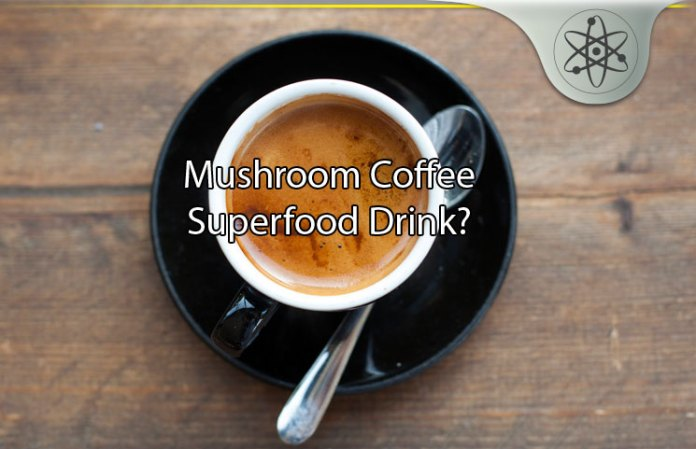 Mushroom coffee review new healthy wild harvested superfood drink whats in mushroom coffee malvernweather Image collections