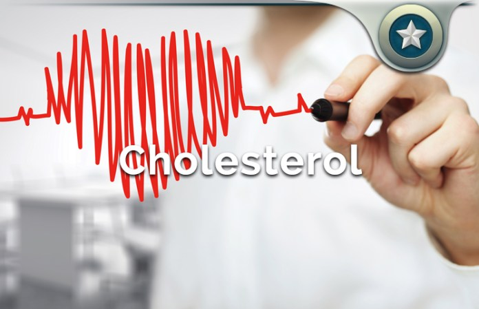 how body makes cholesterol production
