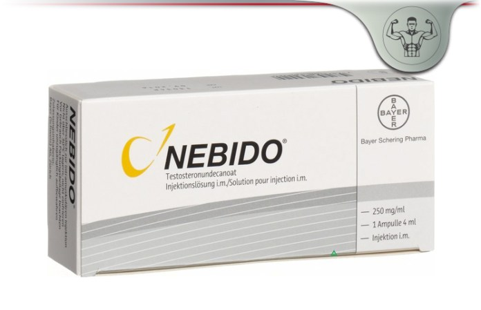 Nebido injection price