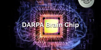 DARPA Brain Chip Implants