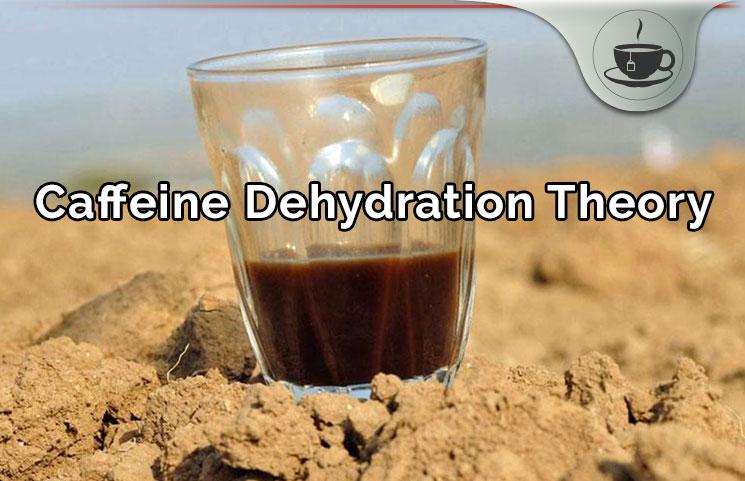 Caffeine Dehydration