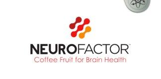 NeuroFactor