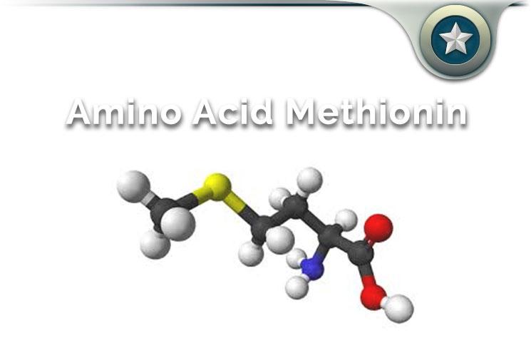 Amino Acid Methionine