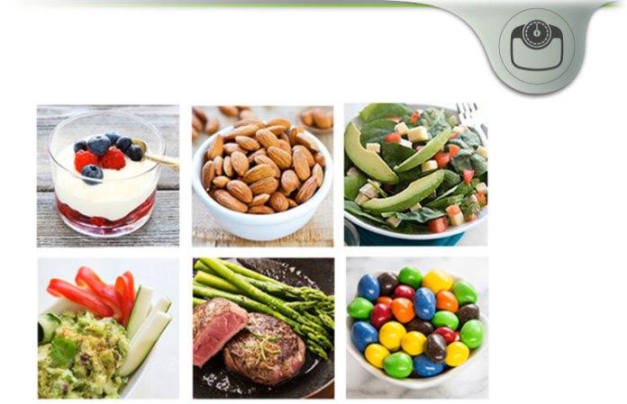 Atkins 40 Diet Plan