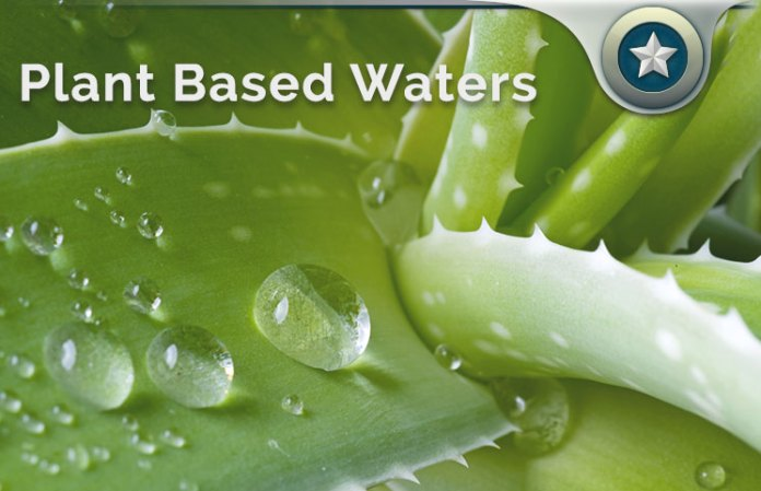 Plant Based Waters