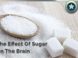 Sugar Brain Side Effects