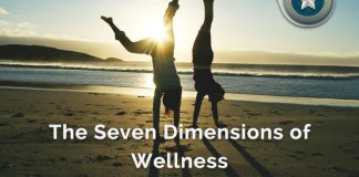 Seven Dimensions of Wellness