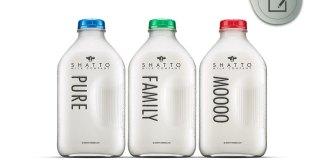 Shatto Flavored Milk
