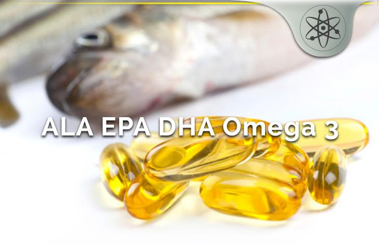 DHA Vs ALA Vs EPA Omega 3 Health Benefits