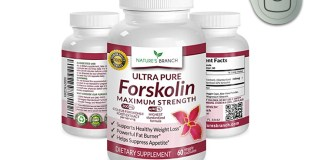 Nature's Branch Ultra Pure Forskolin