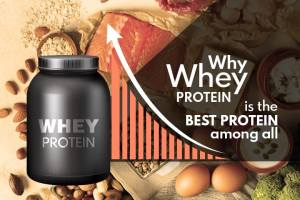 Why Whey Protein is Considered the Best of All (Detailed Analysis)