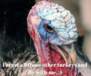 BCAAS. A turkey being weird and winking at people