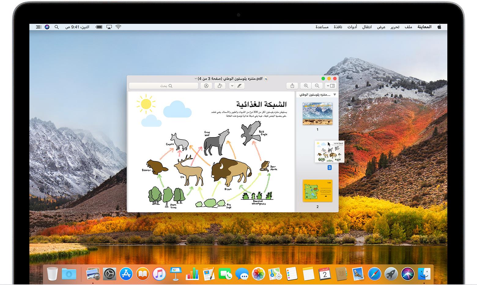 استخدام المعاينة لدمج ملفات Pdf على Mac Apple الدعم