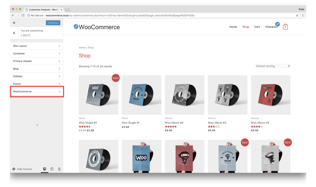 WooCommerce Integration Overview in Business Theme