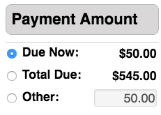 CT Reg - Payment Amount