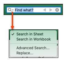 شكل شريط البحث والخيارات