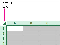 Select All button for entering protected or unprotected  worksheet areas