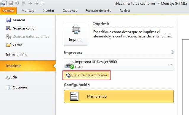 Click Print Options.