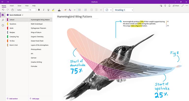 OneNote for Windows 10 的屏幕截图