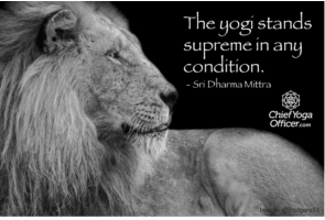 The yogi stands supreme in all conditions